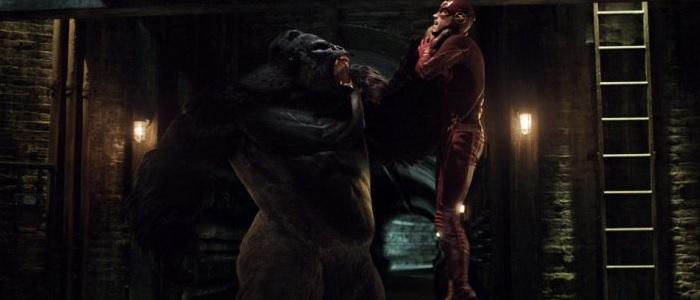 The Flash 2.07 Official Description: Gorilla Warfare